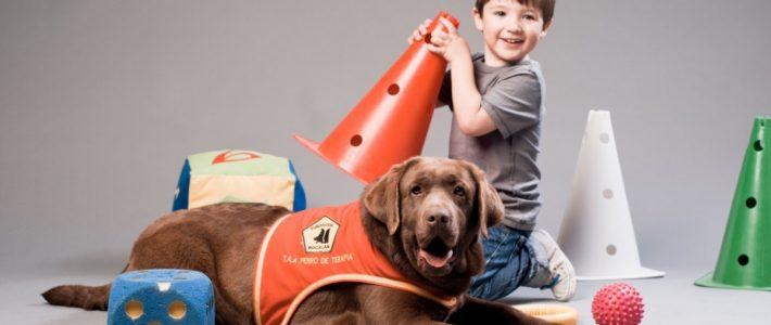 Terapia asistida por animales, una perfecta medicina